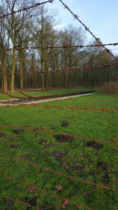 Westerbork Drenthe