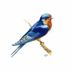 Barn Swallow - Original Watercolor Bird Illustration 7 4/5 x 7 4/5 inches