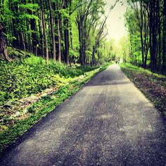Putnam County Trailway - Putnam Avenue leg.