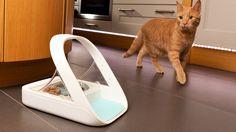 Gamelle pour chat avec détection de puce électronique