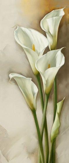 Resultado de imagen para alcatraz flor pintura
