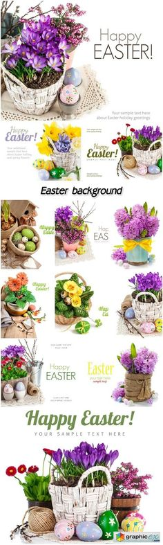 Easter background with beautiful flowers  stock images