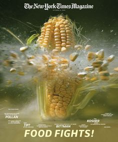 To Brace-faces everywhere! High-Speed Still Photography of an Exploding Ear of Corn Photography by Martin Klimas High Speed Photography, Motion Photography, Still Photography, Macro Photography, Amazing Photography, Shutter Photography, Editorial Photography, Martin Klimas, High Shutter Speed