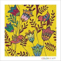 #I LOVE COLORFY! #HERE BIRDY BIRDY