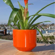 Mod Planter Tangelo  by Gainey