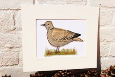 collared dove, textile art by sarah dodd (lotus blossom)