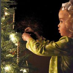 Christmas Tree, Holiday Decor, Home Decor, Teal Christmas Tree, Decoration Home, Room Decor, Xmas Trees, Christmas Trees, Home Interior Design
