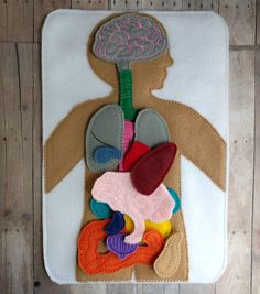 Large Anatomy Play Set, 17 Pieces, Embroidered Acrylic Felt, Embroidered Felt Board with 16 Felt Organs, Science, Medical Play Set, USA Made