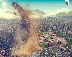 WWF: Los árboles son nuestra fuente de vida, 1 Vivimos donde algún día vivieron. Creativos: Felipe Mambuscay créditos adicionales: Leonardo Botero, Javier Pedraza, Stiven Castaño, Hugo Mejia