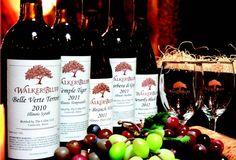 Walker's Bluff releases first vintage of European varieties : Wine Milestone Birthdays, Red Wine, Alcoholic Drinks, Birthday Parties, Bottle, How To Make, Articles, Vintage, Anniversary Parties