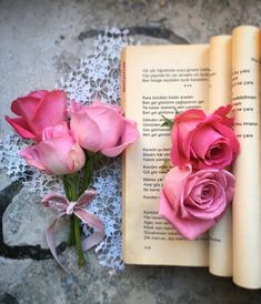Beautiful Flowers Wallpapers, Beautiful Rose Flowers, Fall Wallpaper, Rose Wallpaper, Rose Flower Pictures, Book Flowers, Tea And Books, Beautiful Book Covers, Aesthetic Pastel Wallpaper