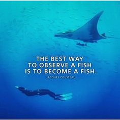 jacques cousteau quotes fish - Google Search