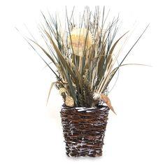 Seashell and Grasses Arrangement