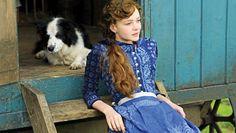 Uğur Vardan | İngiliz usulü 'Hanımın Çiftliği'