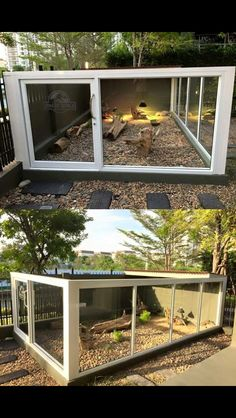 Badass outdoor reptile habitat shared by Mark Prince (original source not known).