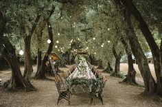 welovepictures_Olive Grove Wedding_086