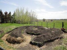 Emilia Hazelip's Fukuoka inspired Permaculture garden