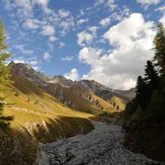 #TravelBuff Swiss National Park, Zernez a particularly impressive example is the Swiss National Park.