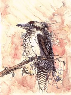 so its the Laughing kookaburra king in my mind anyways! XD watercolour and . The Laughing King Love Drawings, Animal Drawings, Little Bird Tattoos, Australian Birds, Draw On Photos, Watercolor Bird, Little Birds, Bird Art, Laughing