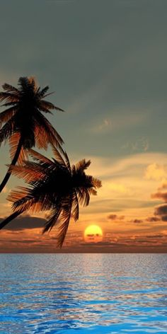 Beautiful Sunset wallpaper x Beautiful Beach Sunset, Sunset Beach, Beautiful Beaches, Beach Sunsets, Beach Sunset Images, City Sunset, Hawaii Beach, Summer Sunset, Palm Tree Sunset