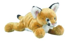 WHAT'S INCLUDED: From a realistic design and distinctive facial markings, this plush Cougar is simply irresistible! This plush Panther is huggable, hand-washable, soft, shed-free and made from high quality acrylic, polyester and stitching to ensure added safety!  	 DIMENSIONS: Measuring at 9 inches, our adorable Mountain Lion stuffed animals are comfortable and soft to the touch! The perfect size for at home and take on the go play!  	 MULTI-PURPOSE: Expand your child's interest in wildlife…