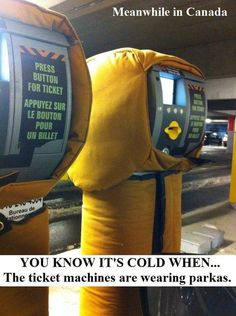 Meanwhile in Canada. Looking at the lighter side of life in Canada. Don't miss 40 Funny meanwhile in Canada photos that will blow your mind. Canadian Memes, Canadian Things, I Am Canadian, Canadian Humour, Canada Funny, Canada Eh, Canada Jokes, Feliz Lunes Gif, Canada Pictures