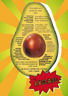 More cool facts about avacado