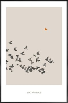Bird And Birds - Sarah Bühler - Poster in kunststof lijst