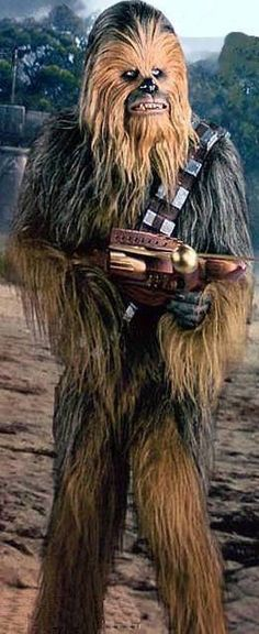 Making Wookie, Wookie, Chewbacca, Costume, Fur, Suit, Bowcaster, Bandolier