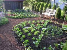Kitchen Garden Design - Ellen Ecker Ogden