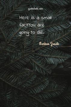 18 Best Quotes Of Markus Zusak About Death