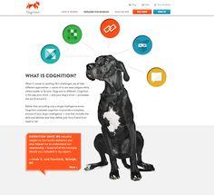https://www.dognition.com/ #web design