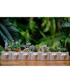 Diamante Blanco - Matera. $30.000 COP. Encuentra más materas, floreros y plantas ornamentales en https://www.dekosas.com/floreros-plantas-ornamentales