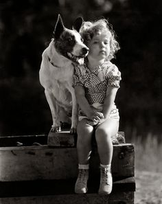 Shirley-Temple-dog-Buster.jpg (492×620)