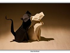 Hoang Tien Quyet's Cat - Together forever