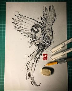 Fineliner Ink and Pencil Animal Drawings. Click the image, for more art by psdelux zeichnen Ink and Pencil Animal Drawings. Pencil Drawings Of Animals, Animal Sketches, Bird Drawings, Art Drawings Sketches, Parrot Drawing, Parrot Painting, Parrot Cartoon, Parrot Logo, Vogel Illustration