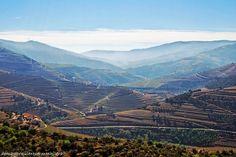 Recorriendo el Valle del #Douro en el norte de #Portugal - via De mayor quiero ser... mochilera 07.05.2015 | Recorrer el Valle del Douro, considerado Patrimonio Mundial por la Unesco, es una auténtica delicia y lo es más aún si eres un amante del vino. Aquí me encontré inmersa en un paisaje lleno de interminables terrazas de viñas donde se cultivan distintas variedades de uva. Además se encuentran poblaciones como Amarante, Pinhão, Lamego o Peso da Régua, todos ellos rodeados de campos de…