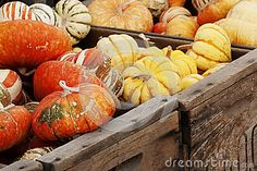 winter-squash-gourds-variety-including-turban-festival-hubard-wooden-crates-34025948.jpg (400×267)