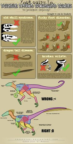 i have had alot of people in the past either ask me how to draw raptors, or when will i make another tutorial. so here is a tutorial on raptors. TUTORIAL: how to draw raptors Drawing Techniques, Drawing Tips, Drawing Reference, Dinosaur Drawing, Dinosaur Art, Creature Drawings, Animal Drawings, Tutorial Draw, Raptor Dinosaur