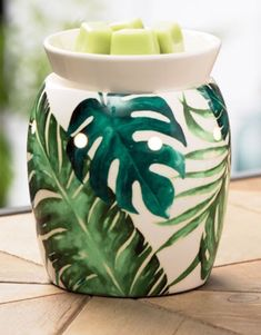 Rainforest Fern Scentsy Warmer