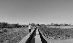 Galería de Proyecto de Paisajismo: Tierra Atacama por Teresa Moller - 8