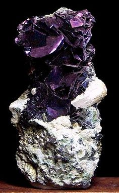 Superb specimen of the very scarce mineral Covellite. This mineral is becoming almost impossible to find in high-quality bladed form but this piece has it all—iridescent blades cover the top portion of the 9.5 cm tall matrix, above some Quartz xls and Pyrite. This specimen is from the Leonard Mine in Butte, Montana