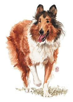 Andando Pintura Collie - Walking Collie Fine Art Print