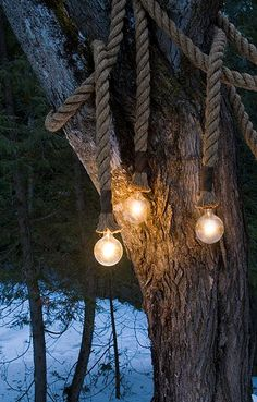 rope lights.