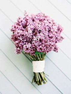 Lavender-hued flowers.