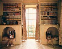 étagères de caisse de chien
