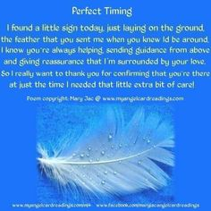 Angel Blessings and Poems with Beautiful Images - Mary Jac - Angel Quotes - Page 3 White Feather Meaning, Meaning Of Feathers, Mantra, Feather Quotes, Dragonfly Quotes, Signs From Heaven, Affirmations, Angel Quotes, I Believe In Angels