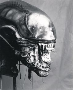 https://imgur.com/a/VWsI3 Great Colectioin of images, photos and sketches from alien - the movie.