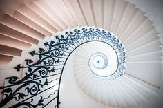 Following the Golden Spiral - stock photo
