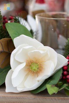 #magnolia #christmas #christmastime #christmasseason #christmasvibes #christmasspirit #christmasdecorating #christmasdecor #christmasdecorations #christmashome #christmasinspiration #christmasinspo #vermeersgardencentre